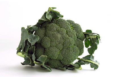 Vitamines, mémoire cerveau, légumes secs, légumieuse